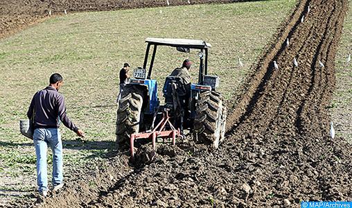 Agriculture, opération de labour, tracteur, semis  (Plaine du Saïss 17 :12 :16 ) -DS
